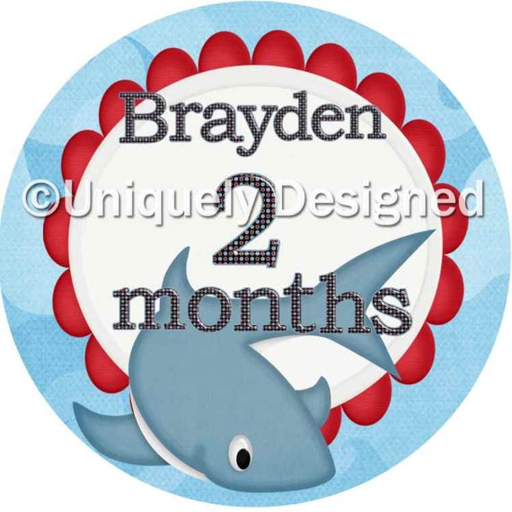 Milestone stickers- monthly baby sticker- baby month sticker- baby stickers- baby shower gift- baby monthly sticker - month by month