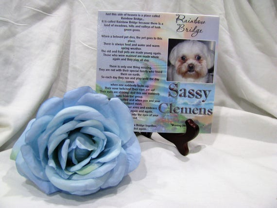 Pet Memorial - Pet Memorials - Pet Memorial Plaque - Pet Sympathy Gift - Pet Remembrance - Pet Loss - Personalized Pet - Personalized Gifts