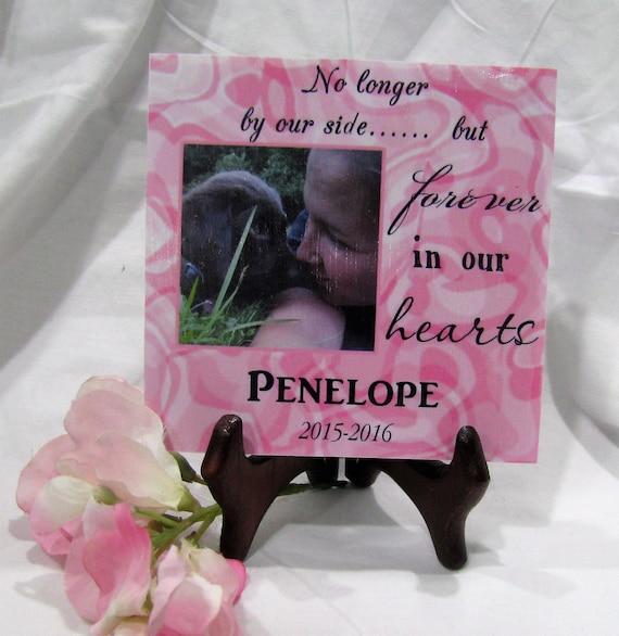 Pet memorial plaque Remember your furry friend Rainbow Bridge