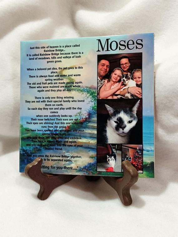 Pet Memorial Plaque, Cat Memorial, Dog Memorial, Sympathy Gift, Gift for Friend