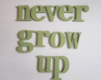 Painted Wooden Letters, never grow up, decorative, nursery, kids decor, letter art, largest letter 20cm, approx 60cm high as displayed