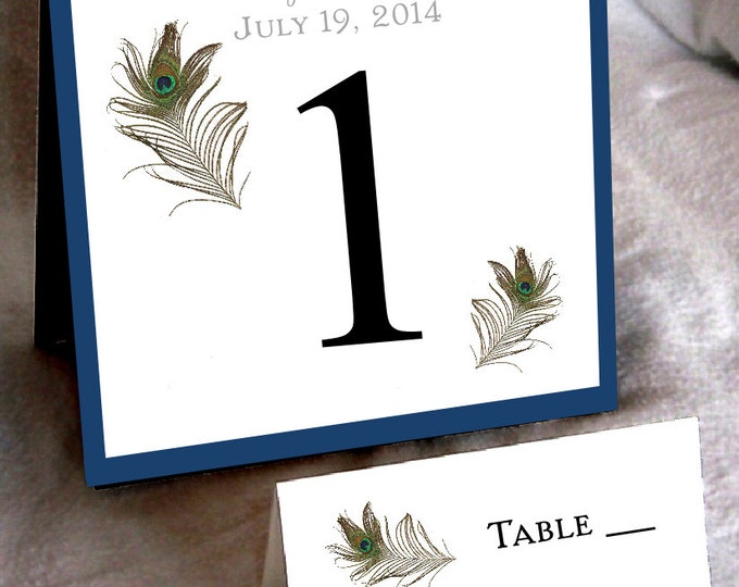 10 Peacock Feathers Wedding Table Numbers and 100 place settings for reception tables