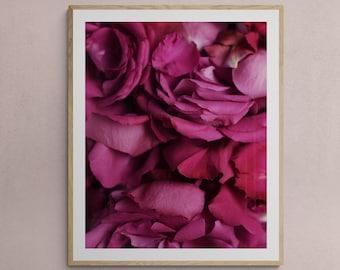 romantic wall art, floral close up, rose petal art, girls room decor, bedroom art print, above bed decor, botanical art, pink rose print,