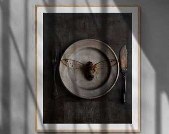 dark home decor, cicada art, insect wall art, dark kitchen decor, grey wall decor, bug wall decor, grey insect art, bug nursery decor,