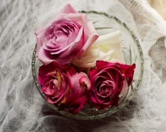 rose art print, romantic flower art, farmhouse decor, girly wall decor, pink flower art, floral still life, fine art photo,rustic flower art