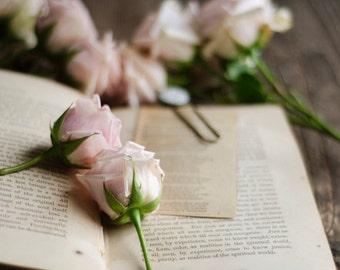 flower and book art, rustic flower art, farmhouse decor, country cottage art, romantic floral art, floral nursery art, rustic office decor