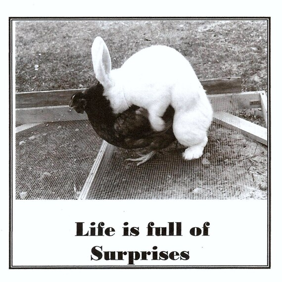 Items Similar To Life Is Full Of Surprises Vintage Photo And Quote