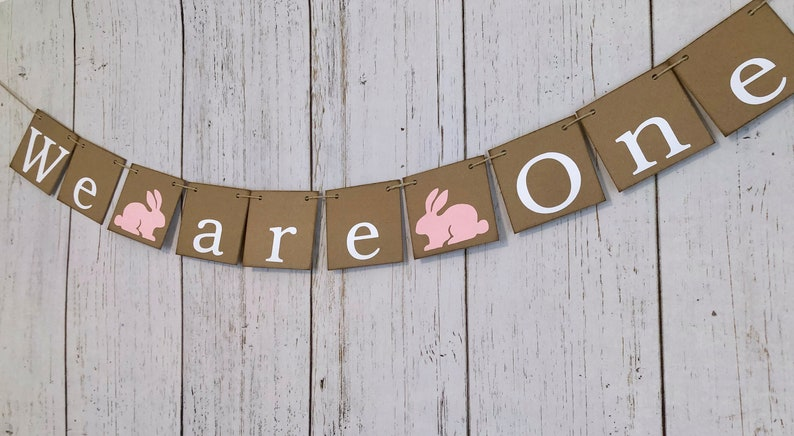 ONE High chair Banner Some bunny is One 1st Birthday We are One Photo Backdrop Twins Bunny First Birthday Twin Girls,Boys 1st Birthday