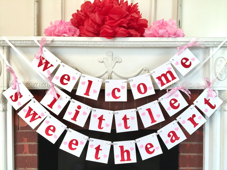 Valentines baby shower decorations  welcome little sweetheart image 1