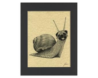 "Snug Parchment Print   Snail + Pug Hybrid Animal   8.5x11"" Art Print in 11x14"" Black Mat"
