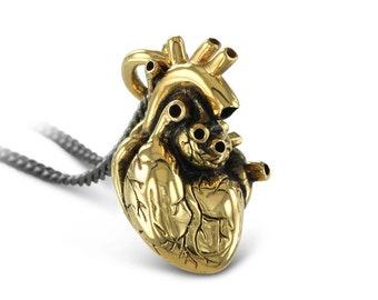 Gold Anatomical Heart Necklace - 24 Karat Gold Plated Bronze Anatomical Heart Pendant - Gold Heart Necklace