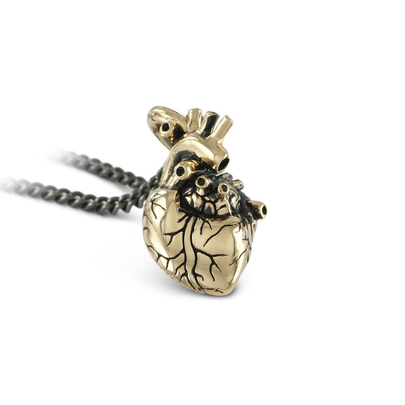 Small Anatomical Heart Necklace  Small Bronze Anatomical image 0