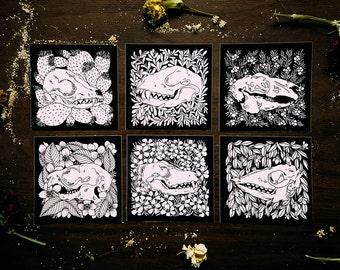 Black and White Skull and Botanical Vinyl Punk Sticker Six Pack