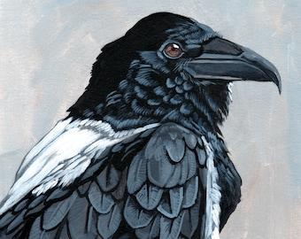 Raven Art Print, Black Bird, Black and White Art, Pied Crow, Crow, Acrylic Painting, Bird Art Print, Raven Home Decor, Wall Art, PoofyDove