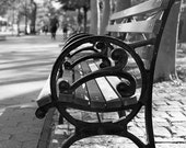 New York City Photography NYC Park Bench Upper West Side Wanderlust Photography Print New York Urban Black and White, Daydream