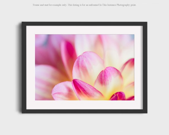 Dahlia Flower Photography Art Print Abstract Floral Elegant Etsy