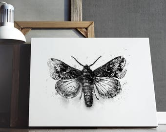 Butterfly  print with black watercolors. Watercolor technique. Print on paper, greeting cards, wall decor.High resolution