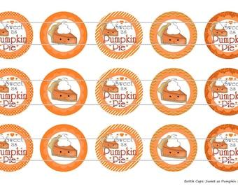 "15 Sweet as Pumpkin Pie 1 Digital Download for 1"" Bottle Caps (4x6)"