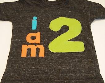 lime orange turquoise birthday Shirt Organic Shirt Blend customize colors boys girls birthday shirt first birthday and up