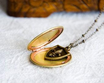 Locket Necklace Fleur De Lis Brass Round Locket French Fashion Photo Locket - N291