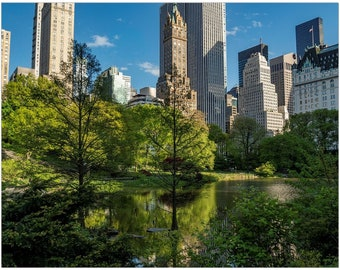 Reflections of New York City Art Print   Photos in Isolation   Central Park   NYC   Giclee Art Prints