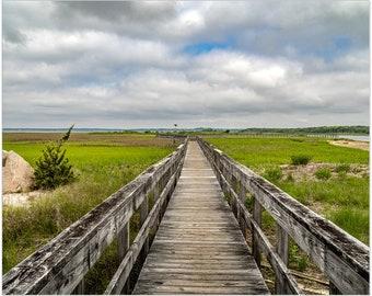 Boardwalk thru Wetlands   Southampton   Premium Art Print   Landscape   natural beauty   Fine Art Prints