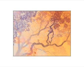 Nature Photography   Greeting Card   Fine Art Print   Zen decor   Underwater Coral   Tree Branches   Orange   Purple   Green   Rose