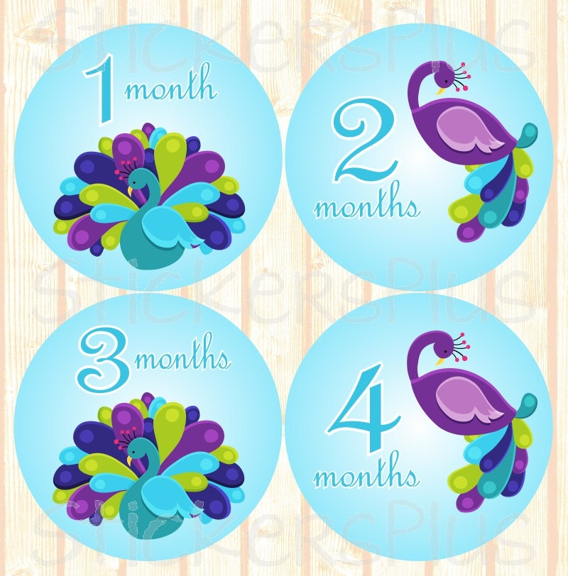 Baby Month Stickers Plus FREE Gift Girl Monthly Milestone