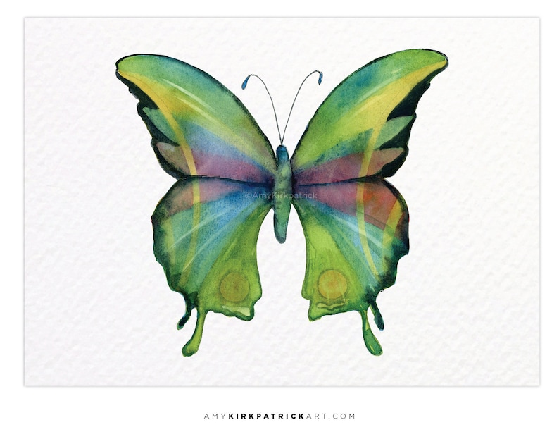 PRISM BUTTERFLY 11 ACEO Print of Watercolor Painting image 0