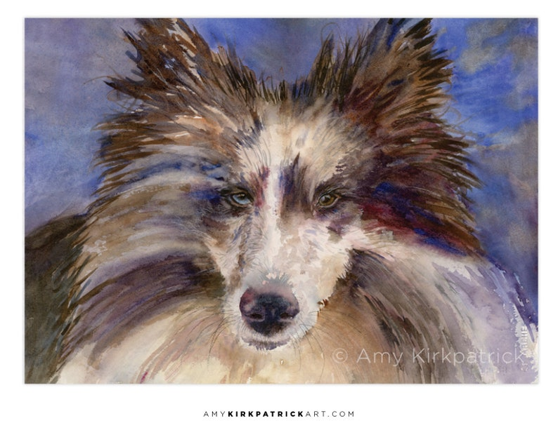 SHELTIE Dog ACEO Print of Dog Watercolor Painting Blue Merle image 0