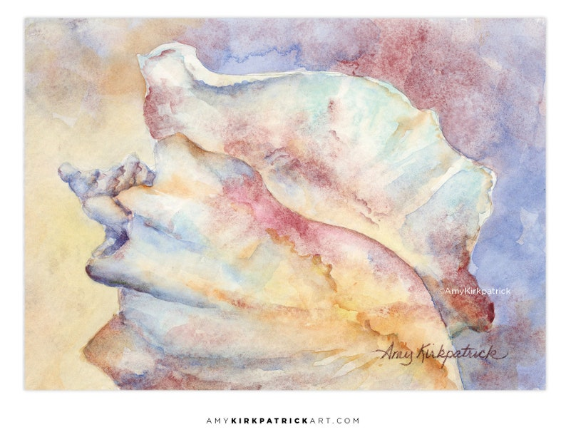 CONCH  ACEO Print of Watercolor Painting Collectible 2.5x3.5 image 0