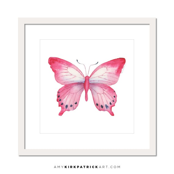 Pink Laglaizei Butterfly 108 Watercolor Painting Signed Art Prints Original Painting Butterfly Wall Decor By Amy Kirkpatrick