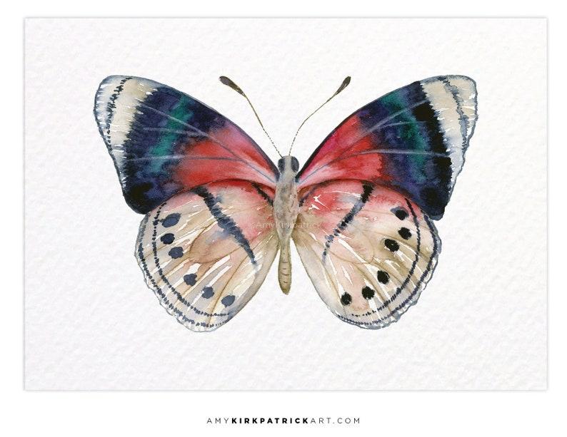 PERISAMA VANINKA Butterfly 30 ACEO Print of Watercolor image 0