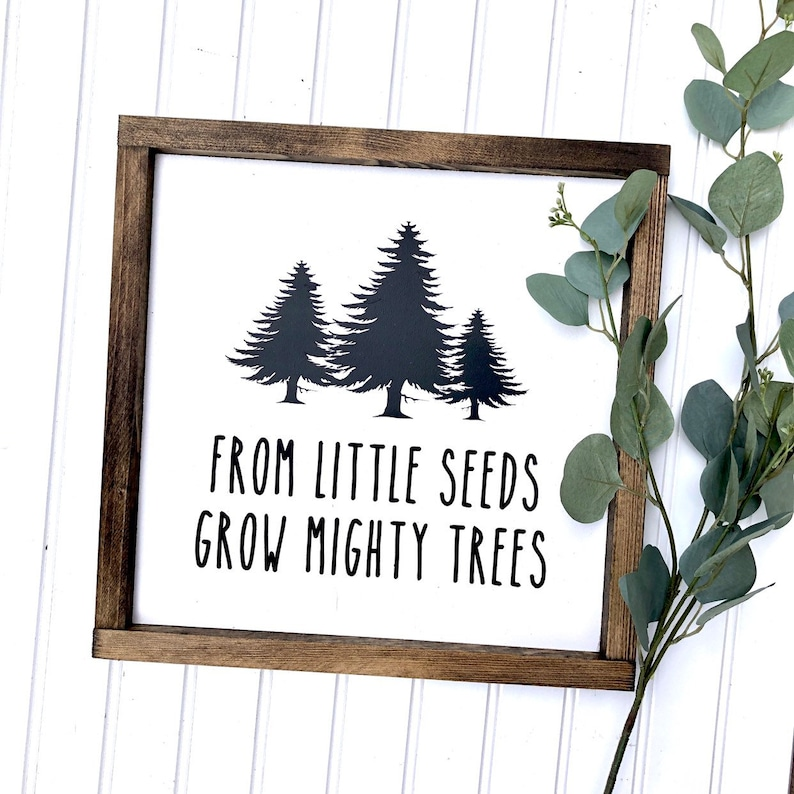 From Little Seeds Grow Mighty Trees Wood Sign Etsy
