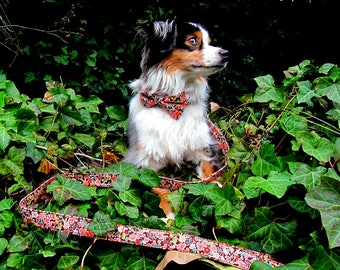 Spring Floral Dog Leash - Brown, pink, yellow