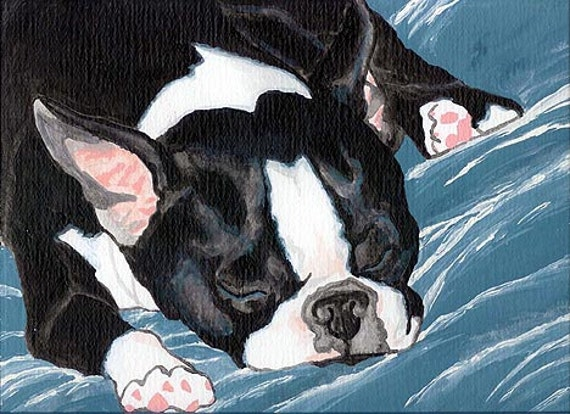 11X14 BOSTON TERRIER NAP Art PRINT of Painting by VERN