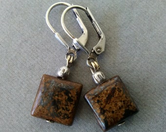 Bronzite and Sterling Silver Leverback Earrings
