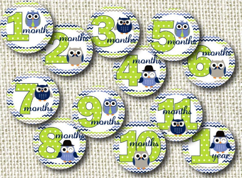 Baby Monthly Milestone Stickers  Mr. Owl image 0