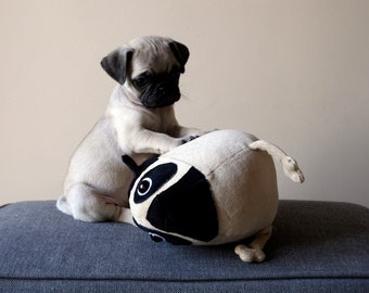 Little Pug dog, cute light brown puppy, soft pug toy