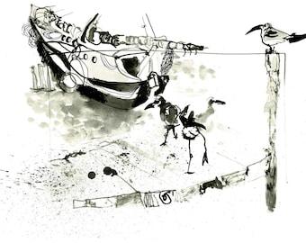 Seagulls and a sailboat - Caye Caulker (Belize)