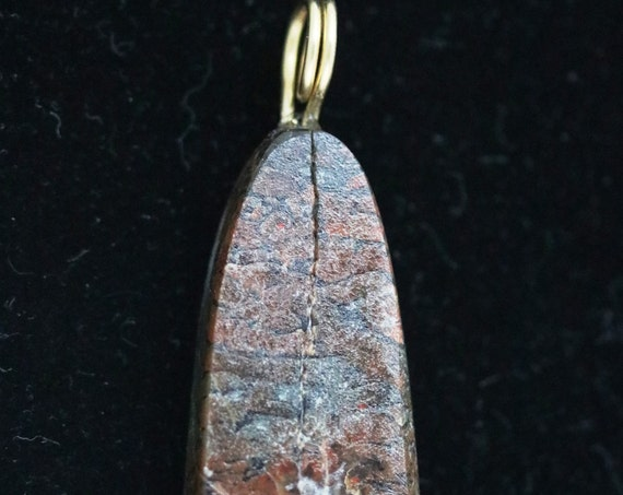Dinosaur Bone pendant, fossilized brown, brass twirl bail 60ct