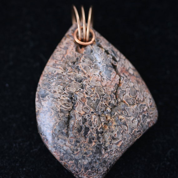Dinosaur Bone Pendant, brown tan gray, Bronze Twirl Bail, 67ct