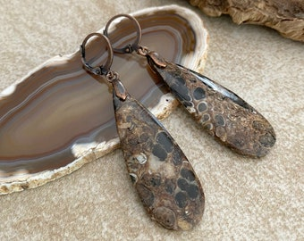 Ammonite Fossil Earrings | natural crinoid earth stone jewelry