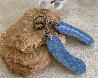 Coral Fossil Earrings | fossilized blue stone jewelry
