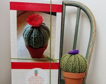 Knit KIT - Flowering Cactus Kit DIY with pattern and knitting needles, yarn, pot, stuffing, etc! Great beginner knitter crafter Easter gift.