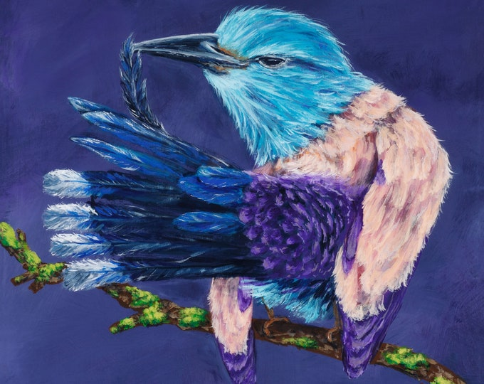 Roller Bird painted on wood panel