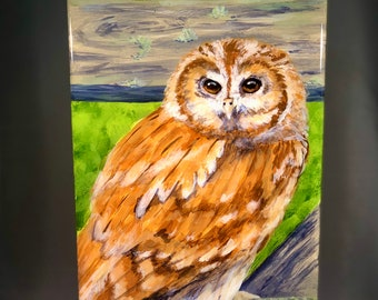 Tawny Owl painted wood panel