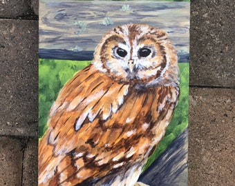 Tawny Owl painted wood panel