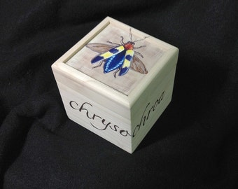 Hand painted jewel beetle small box