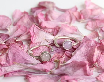 Minor chevalier/knuckle ring